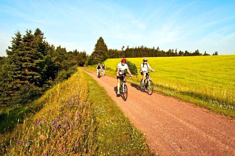 Confederation trail in PEI